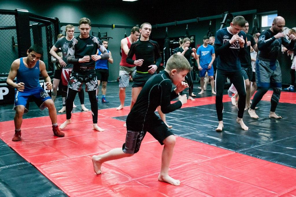 Занятия по смешанным боевым искусствам